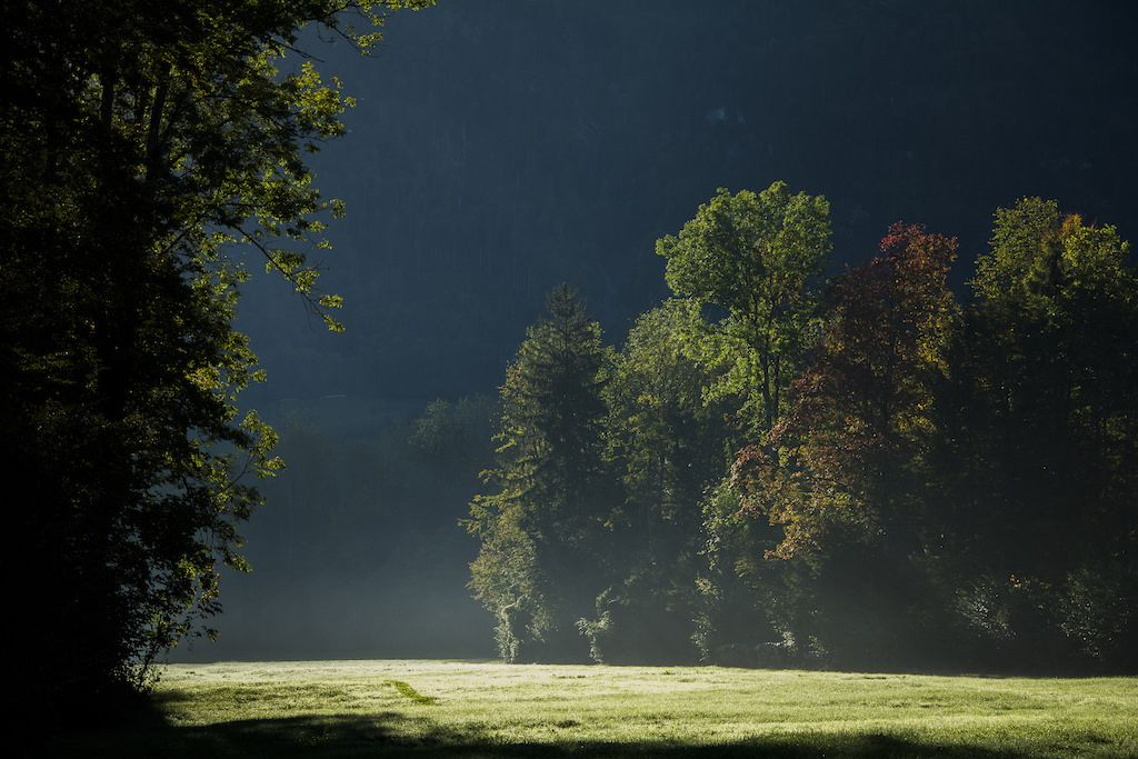 Herbst in Giswil